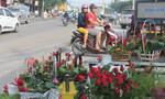 Đường phố Biên Hòa tràn ngập sắc hoa ngày 20-10