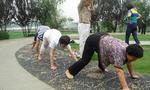 Trung Quốc: Trào lưu tập thể dục bằng cách… bò vòng quanh