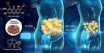 Cảnh báo mới về đường trong cuộc chiến chống thừa cân, béo phì