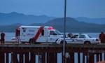 Canda: Chìm tàu chở khách ngắm cá voi, 4 người chết