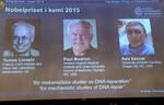 Nobel Hóa học 2015 dành cho nghiên cứu ADN chữa ung thư