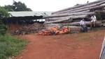 Bộ Công an đột kích các xưởng gỗ lậu ở Gia Lai