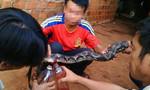 Ăn thịt, uống tiết canh con nưa, 12 người trong thôn ngộ độc