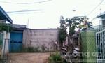 Khu phố 4, thị trấn Hóc Môn: Người dân bức xúc nạn cá độ