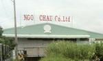 Bắt giam đại gia thủy sản Cà Mau chiếm đoạt 170 tỷ đồng