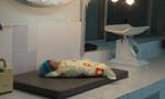 Bé gái sơ sinh tử vong bất thường tại bệnh viện