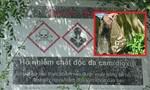 Táo tợn bắt trộm cá ở hồ nhiễm chất độc da cam đem bán
