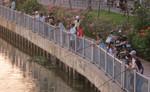 Bất chấp lệnh cấm, người dân vẫn thi nhau tận diệt cá trên các tuyến kênh