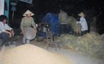 Nắng nóng như đổ lửa, nông dân đập lúa ban đêm