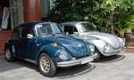 Volkswagen Beetle - Mẫu xe duyên dáng mọi thời đại