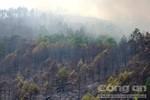 Cháy rừng lan rộng do nắng nóng