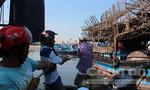 Ngư dân làm giàu trên vùng biển Hoàng Sa