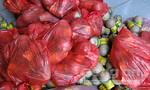 Bắt đối tượng vận chuyển 1.300 quả pháo trứng lậu