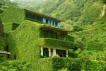 Ngôi làng bỏ hoang ở Chiết Giang đẹp như tranh vẽ
