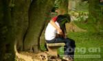 Cây xanh ở vườn Bách Thảo bị 'hành xác' ác liệt