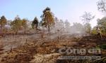 Liên tiếp xuất hiện các điểm cháy rừng ở Thanh Hoá