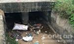 Một bé sơ sinh bị bỏ rơi chết thương tâm ở kênh nước