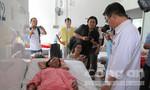 Một phụ nữ mang thai bị rắn lục cắn trọng thương