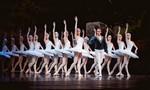 Vở ballet huyền thoại Hồ Thiên Nga sẽ được tái hiện hoàn hảo ngay tại Việt Nam