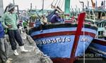 Nhiều tàu cá 'trùm mền'