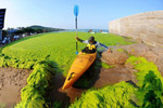Thuyền lướt trên tảo xanh ở Trung Quốc