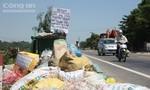 Hàng trăm tấn rác hôi thối dồn ứ tại khu kinh tế Dung Quất