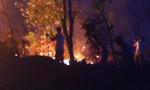 Rừng thông bốc cháy dữ dội, hơn 500 người tham gia dập lửa