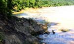 Nữ sinh lớp 10 chết đuối trên sông Lam