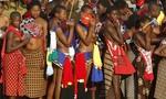 Đến dự lễ kén vợ của vua, 65 thiếu nữ chết thảm