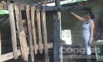 Đốt hàng loạt  nhà chứa rơm của hàng xóm vì hay bị chửi