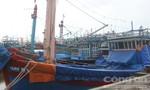 Ngư dân Quảng Ngãi dùng bạt trùm kín tàu thuyền chống bão