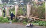 Người đàn ông tự thiêu bên bụi hoa dã quỳ