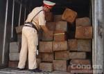 Dùng xe đông lạnh để chở gỗ lậu