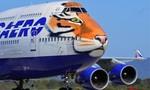 Máy bay vẽ hình đầu hổ Siberia