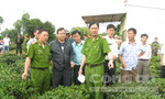 Vụ giết người chôn xác ở Lâm Đồng: Những tình tiết ly kỳ giờ mới kể