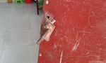 Trộm cạy cửa 5 phòng trọ cuỗm sạch tài sản