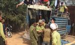 'Lâm tặc' táo tợn tấn công kiểm lâm vườn quốc gia cướp gỗ lậu