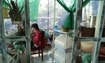 Canh chủ nhà ngủ, kẻ trộm cắt cửa sổ vào trộm tài sản