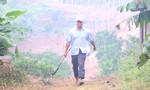 Táo tợn vác rựa, thả chó becgie ngăn cơ quan chức năng tịch thu gỗ rừng bị chặt phá