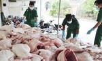Bắt giữ gần 1 tấn thịt heo đông lạnh bốc mùi hôi thối