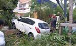 Ô tô lao vỉa hè đè cụ ông chạy xe ôm gần sân bay Tân Sơn Nhất