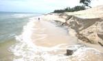 Triều cường làm sạt lở bờ biển La Gi gây thiệt hại nặng cho người dân