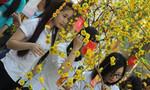 'Đường hoa mùa xuân' của sinh viên Đồng Nai