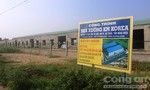 Dừng xây dựng một nhà máy trái phép