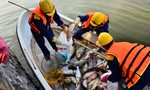 Thủ tướng yêu cầu làm rõ nguyên nhân cá chết Hồ Tây