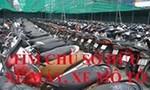 Công an Quận 6 tìm chủ sở hữu 19 xe máy
