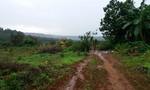 Công ty Long Sơn tự ý vào san ủi đất, phá cây trồng của dân