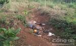 Hai nghi can là anh em ruột trong vụ nổ súng ở Đắk Nông ra đầu thú