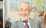 Nhà khoa học Nhật đạt Nobel Y sinh nhờ nghiên cứu về quá trình tự thực của tế bào