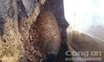 Hoảng hồn phát hiện bom 'khủng' khi đào móng nhà